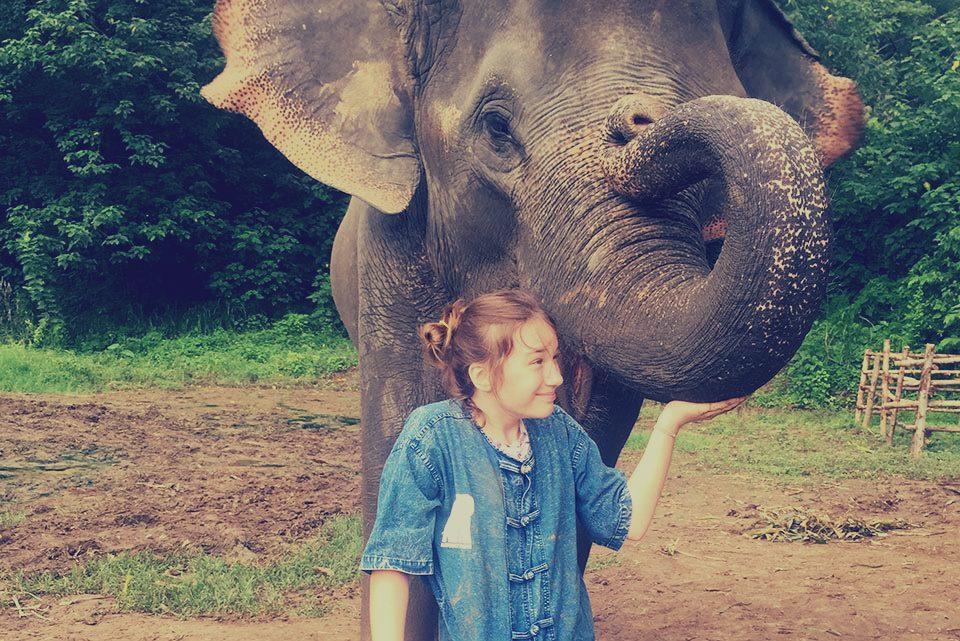 Rezerwat słoni w Chiang Mai