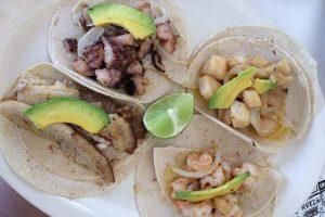 tacos w tulum kraina piniaty