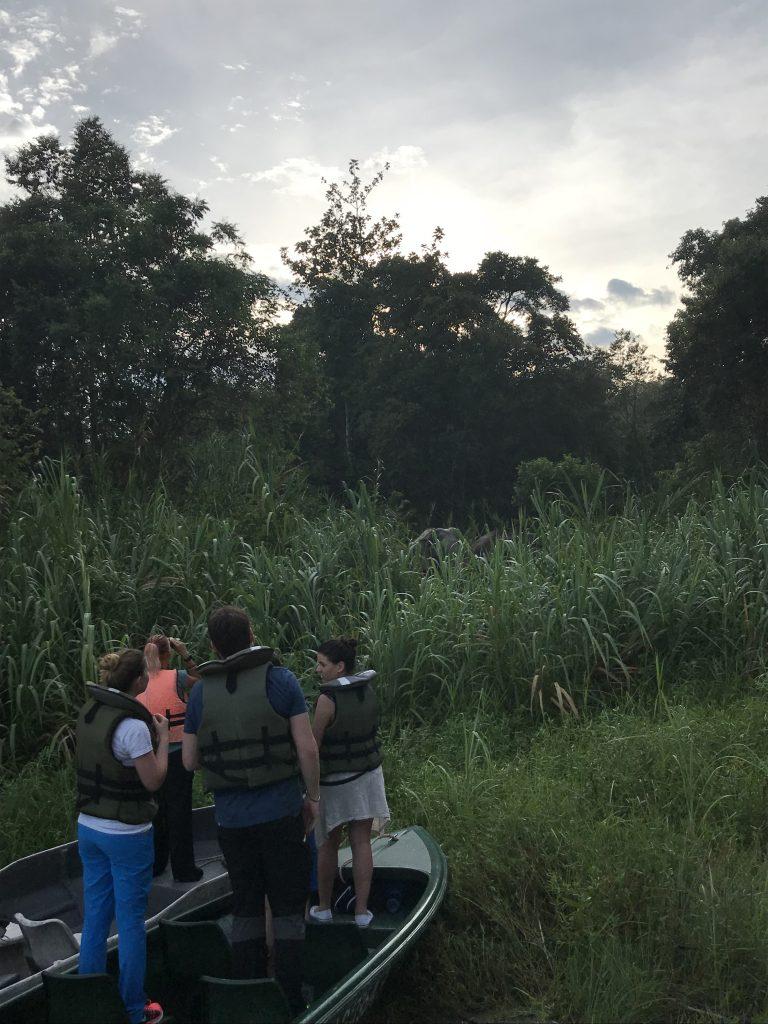 Rzeka Kinabatnagan Borneo